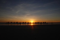 Kamelreiten am Cable Beach in Broome